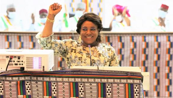 Tsègan Yawa Djigbodi, Parlement du Niger
